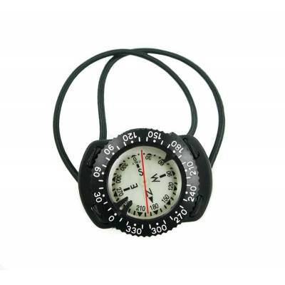 Compass with elastomeric bungee mount